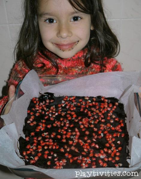 pomegranatechocolate4