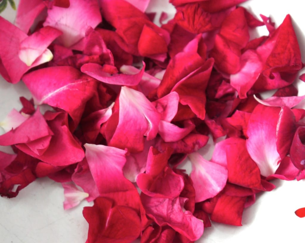 homemade lotion with rose petals