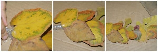 dried leaves craft