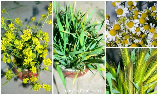 sensory play with flowers 3