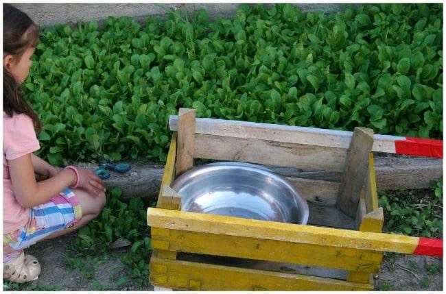 diy wheelbarrow garden