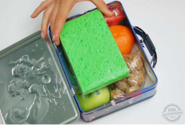 lunchbox frozen pack