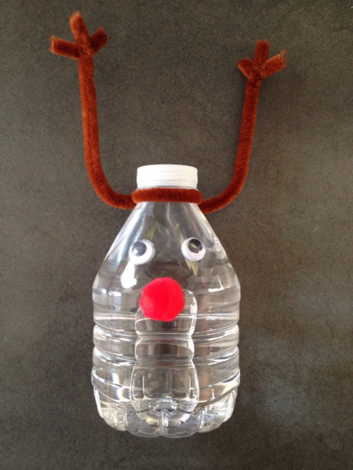 a water bottle with googly eyes and a red pom pom nose. Brown pipe cleaners are twisted to look like antlers