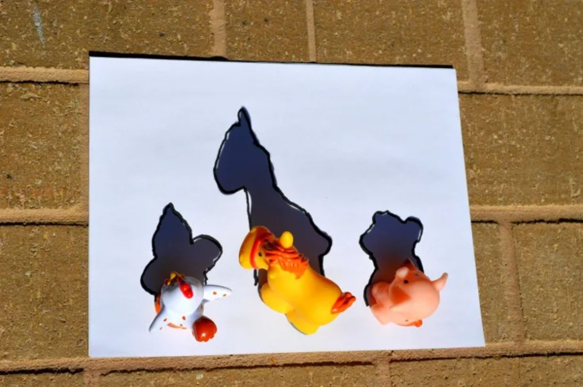 a white sheet of paper has 3 animal toys on it. Shadows of the figures can be seen on the paper