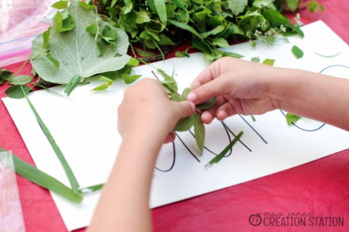 two hands hold leaves of various sizes over a sheet of paper with large writing on it