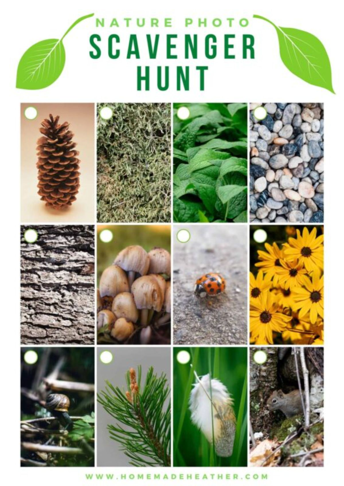 """The text reads """"Nature photo scavenger hunt"""" and below are 12 blocks with different nature items in them. Each box has a circle to check"""