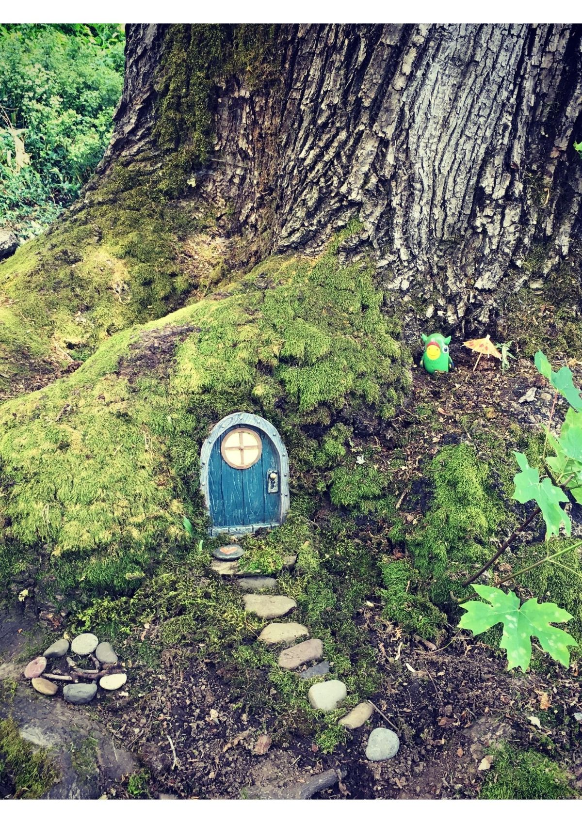a fairy door is cut into the base of a tree in the forest with stones leading up to it like a path