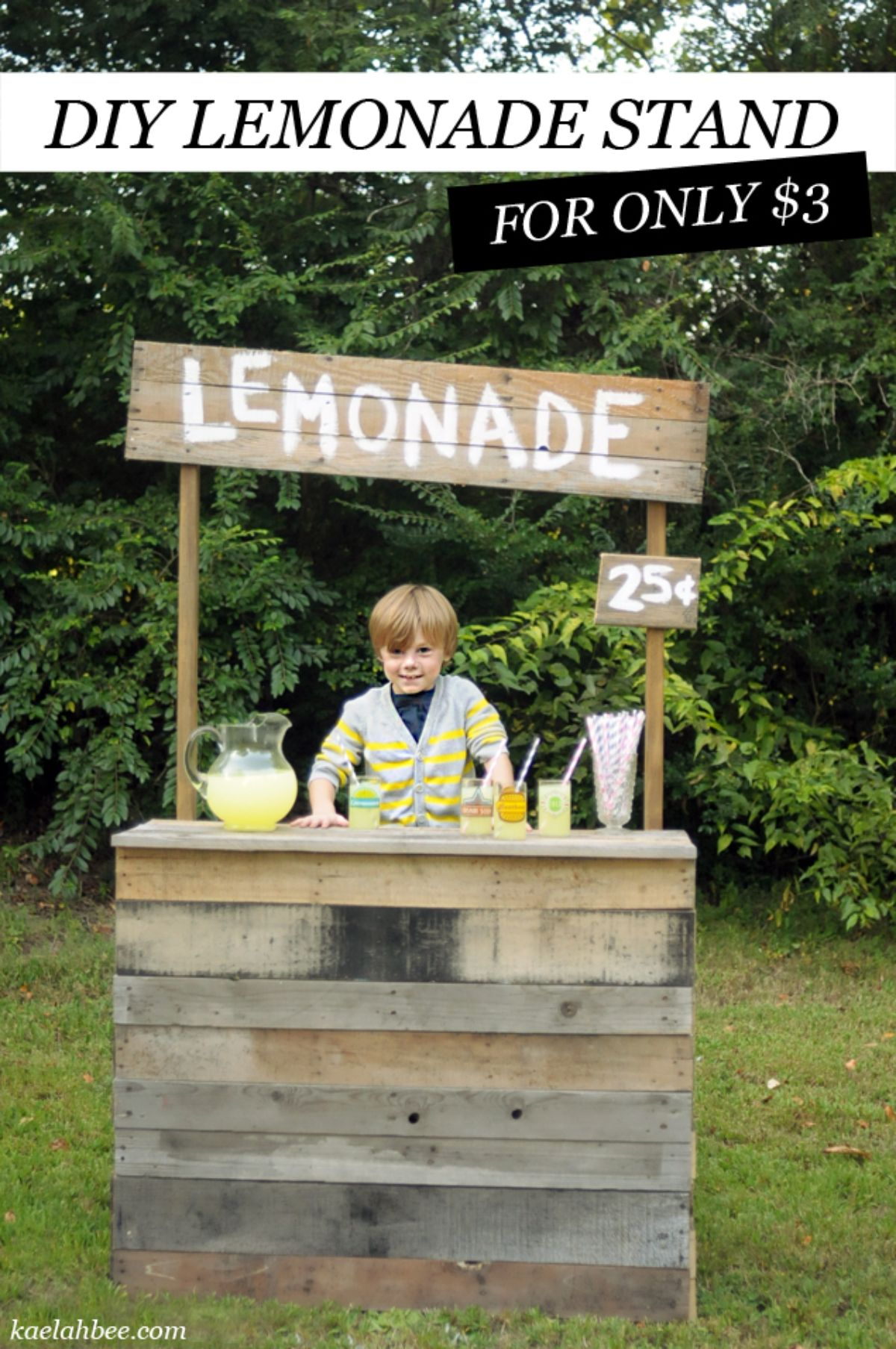 """a boy in a striped sweater stands behind a emondae stand made of pallets. The text reads """"DIY Lemonade stand for only $3"""""""