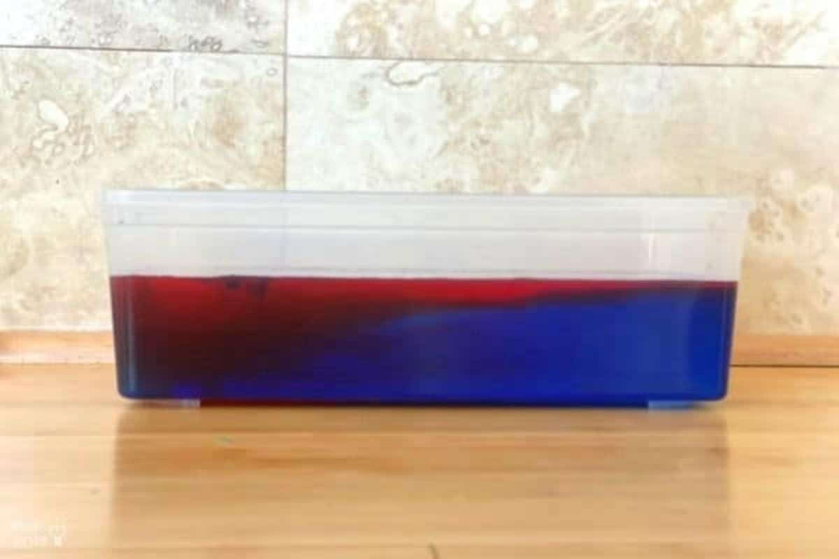 on a kitchen counter is a plastic tray filled with blue and red colored water
