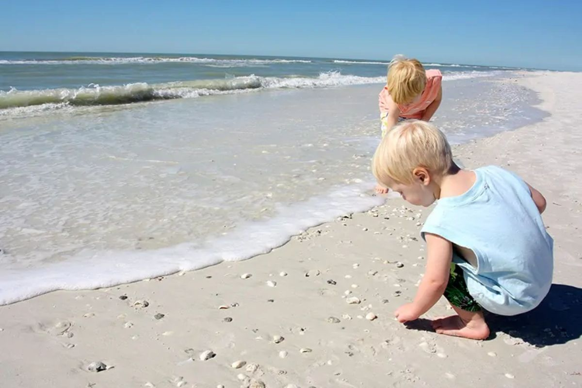 a boy in a blue shirt and a girl in a peach shirt search for seashells on the beach in the surf