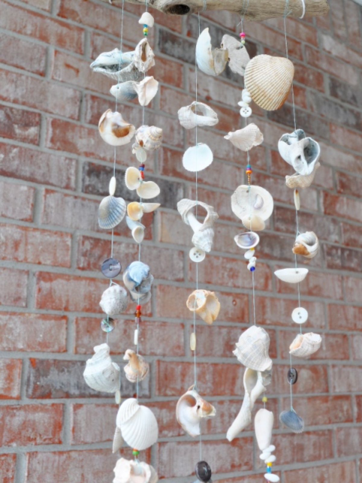 a wind chime made of seashells hangs in front of a brick wall